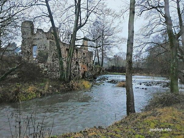 лососно руины мельницы фото
