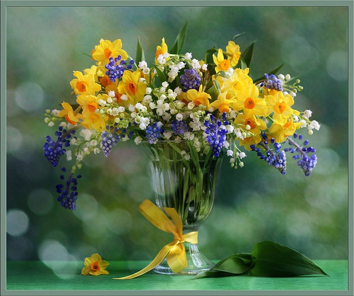 какие цветы стоит дарить