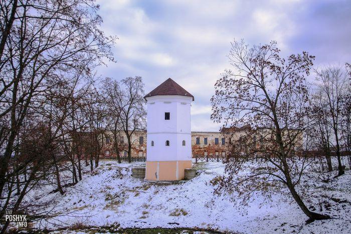 Замок Ходкевичей и Сапег в Быхове