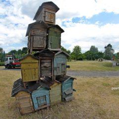 «Арт-острова»- выставка на комсомольском озере