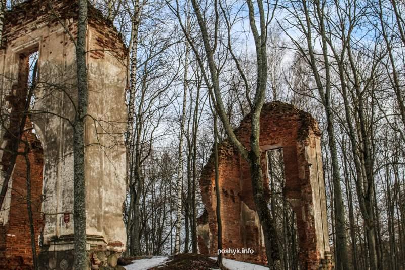 палац тышкевичей фото