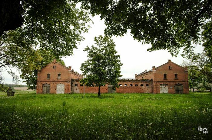Конюшня в Грушевке