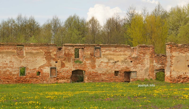 ruins v Bereze photo