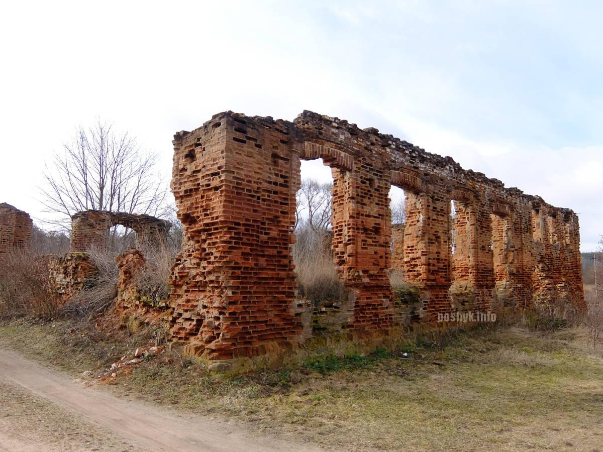 ruins-synagoga--novy-sverzhen