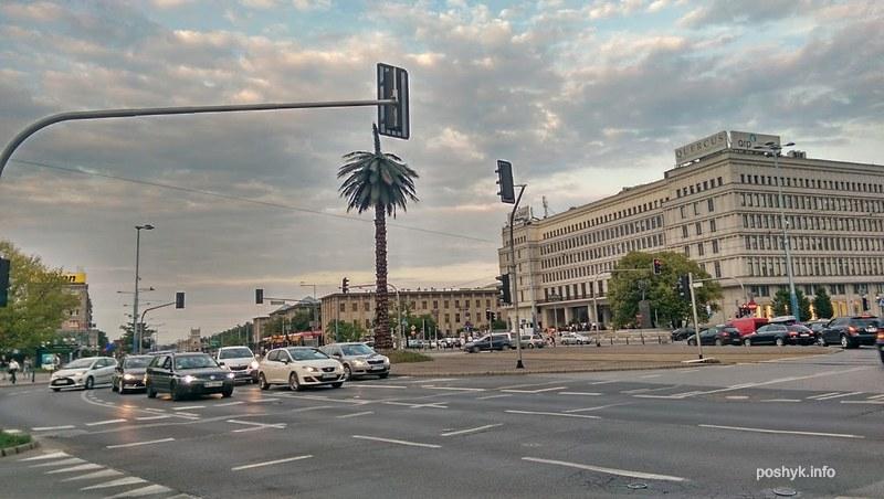 Площадь Пальмы Варшава