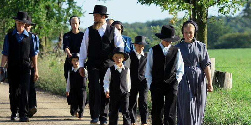 жизнь амишей