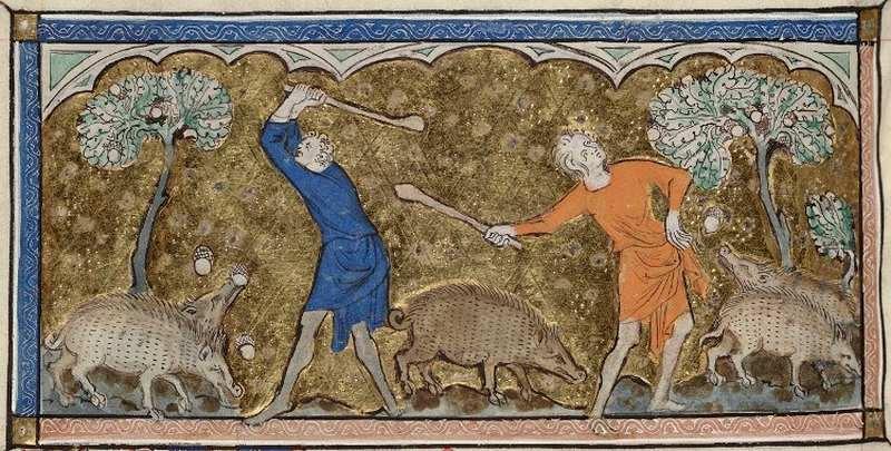 что ели в среденевековье