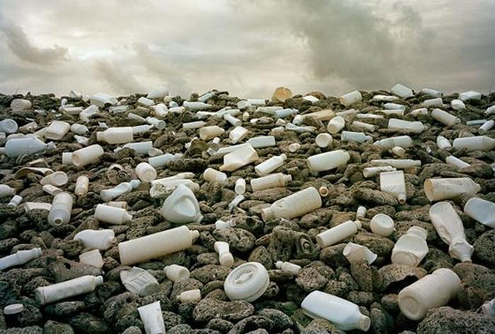 ecologia problem