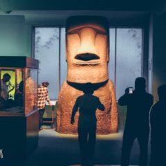 Музей естественной истории в Нью-Йорке.