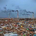 Самые интересные документальные фильмы про экологию