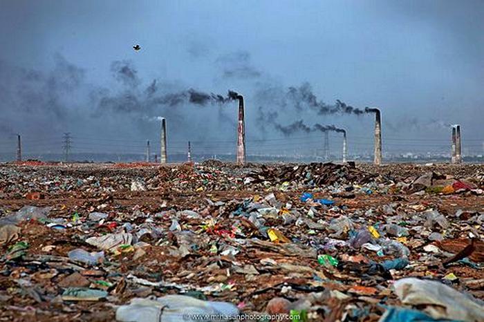 документальные фильмы про экологию