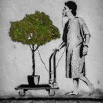 Необычные и полезные экологические изобретения