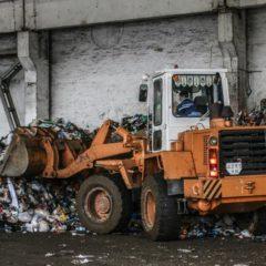 Жизнь после мусорного бака.