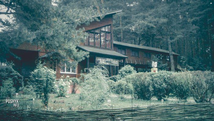 музей мифологии и леса