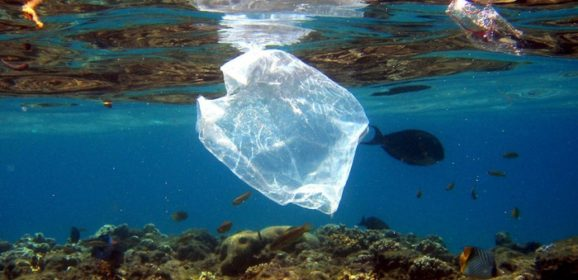 Развернулась кампания «The Ocean Cleanup» по очистке океана от пластика