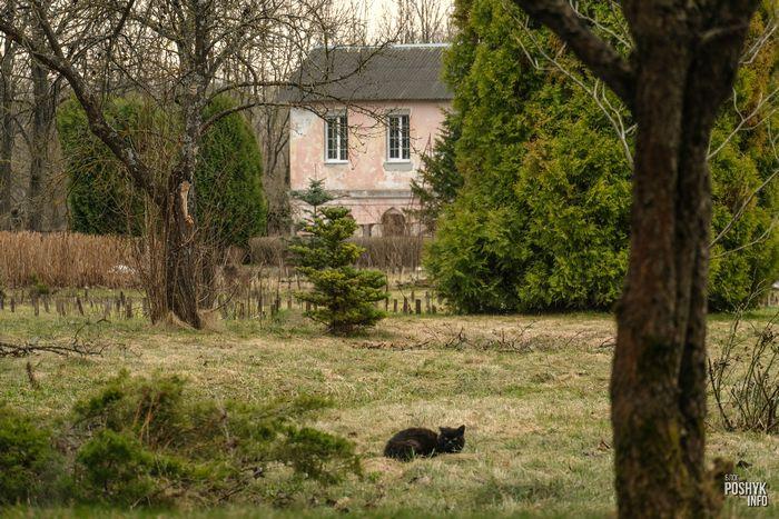 усыпальница Дуниных-Слепсцев в Витебске