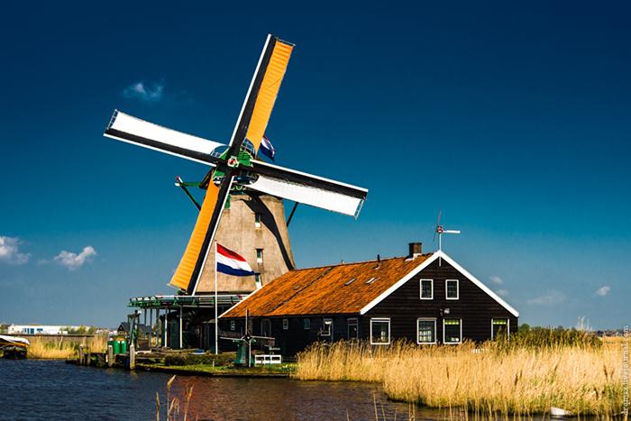 день мельниц в нидерландах