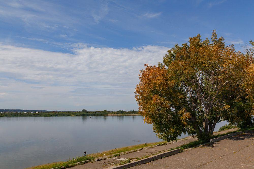 обзорная экскурсия по Томску