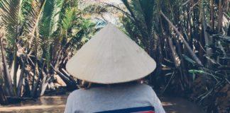 дельта реки меконг вьетнам