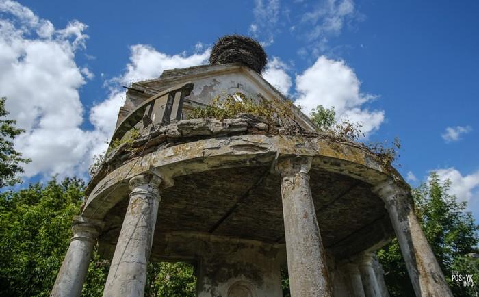 Руины усадьбы в Дикушках
