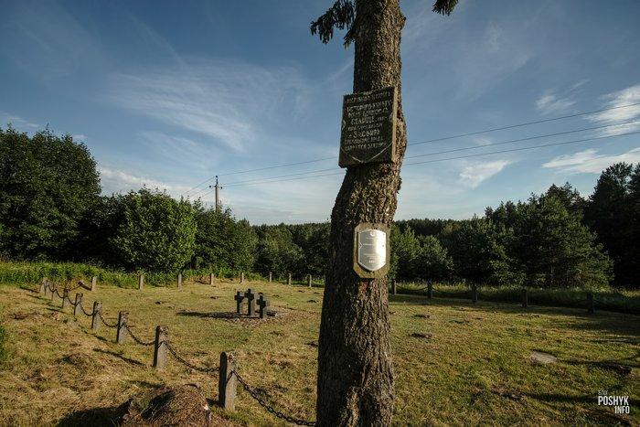Военное кладбище в деревни Засвирь