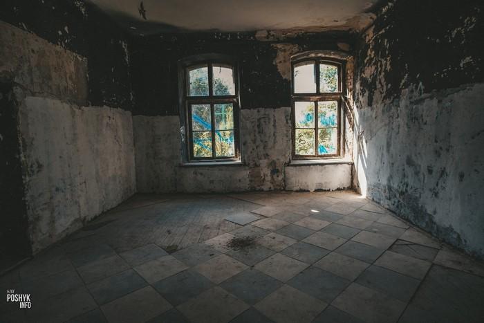 Желудок комнаты