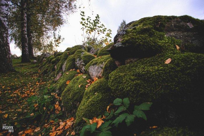 Каменная ограда Осингородок