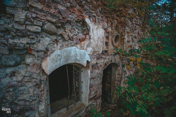 Усадьба Домейко Кашары