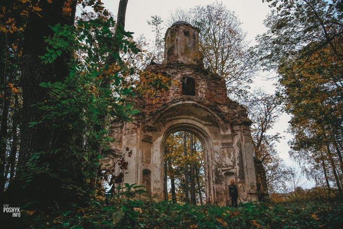 Усадьба Домейко Ситцы руины брамы