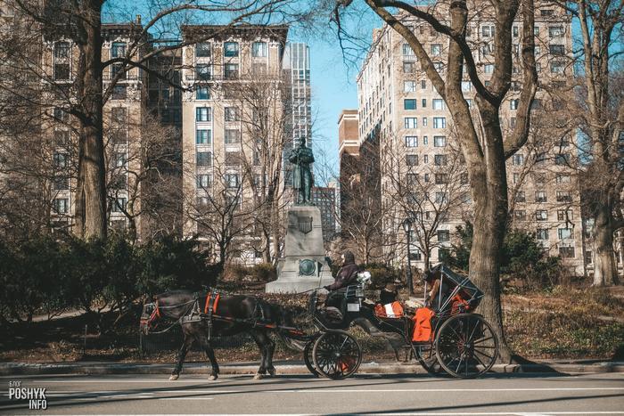 Центральный парк в городе Нью Йорк