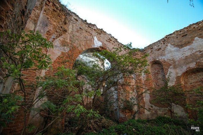 Руины церкви Беларусь