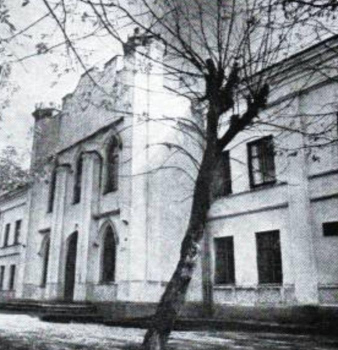 Кричев - дворец Потемкина Голынских