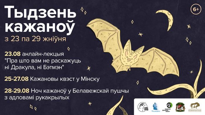 С 23 по 29 августа в Беларуси пройдет Неделя летучих мышей