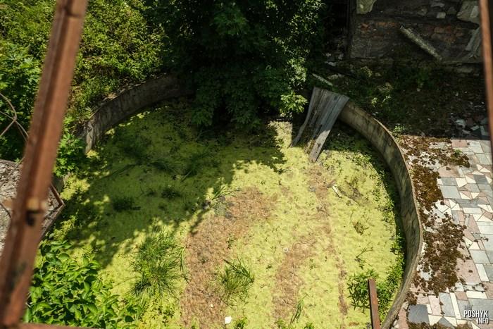 Заброшенный бассейн под Раковом