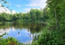 Озеро Святое в Солигорском районе, рядом с деревней Саковичи