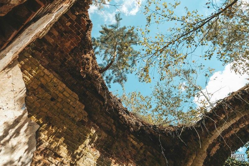 Развалины храмы Беларусь